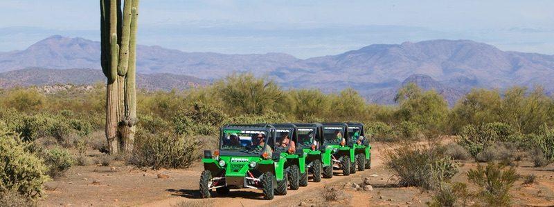 Green Zebra Adventures