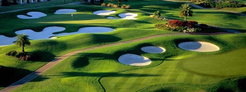 Reunion golf