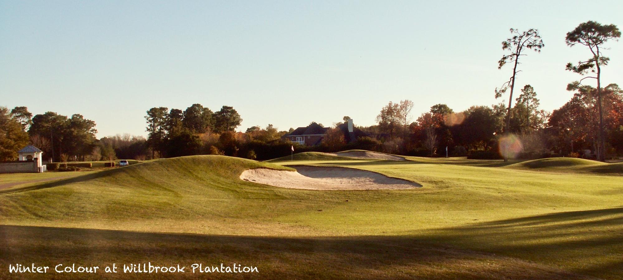 Litchfield Beach  Golf Resort Couples golf break