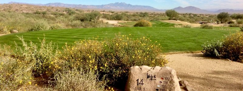 WeKoPa Cholla 14th hole